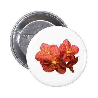 Spotted Orange Orchids Pinback Button