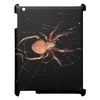 Spotted Orb Weaver Spider iPad Cases