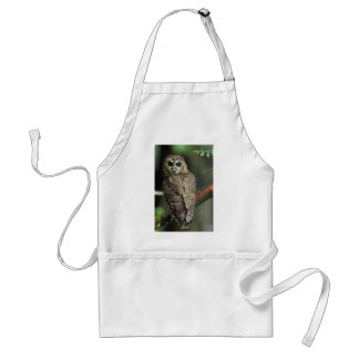 Spotted owl adult apron