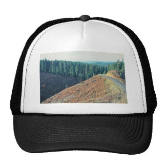 Spotted Owl Habitat Clear-cutting Hat