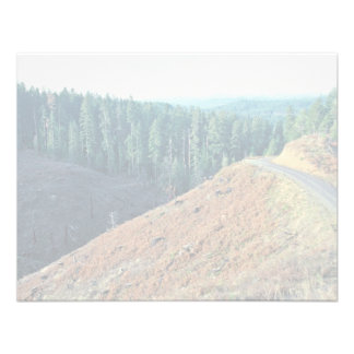 Spotted Owl Habitat Clear-cutting Invites