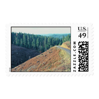 Spotted Owl Habitat Clear-cutting Stamps