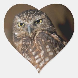 Spotted  Owl Heart Sticker