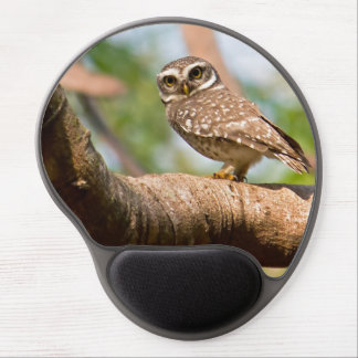Spotted owl on morning flight. gel mouse pad