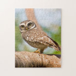 Spotted owl on morning flight. puzzle