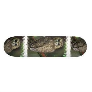 Spotted Owl Skateboard