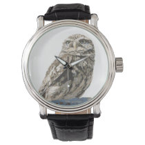 Spotted Owl Watch