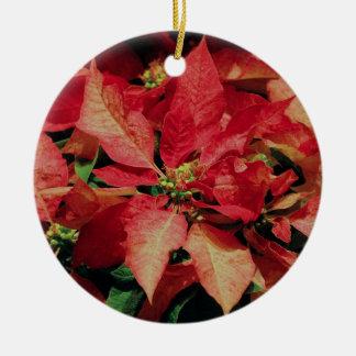 Spotted Poinsettia Ornament