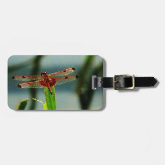 Spotted  Red and Black Dragonfly Bag Tag