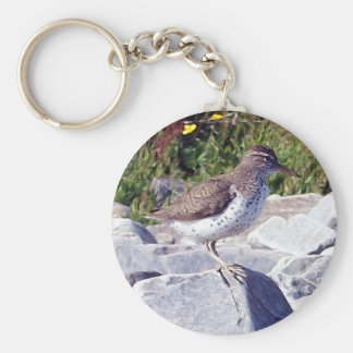 Spotted Sandpiper 1 Key Chain