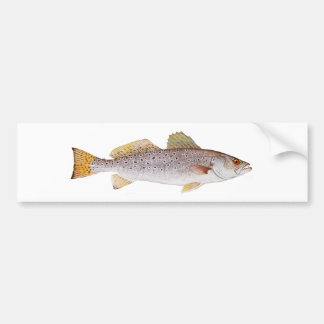 Spotted Seatrout Bumper Stickers
