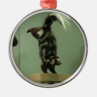 Spotted skunk; museum exhibit metal ornament