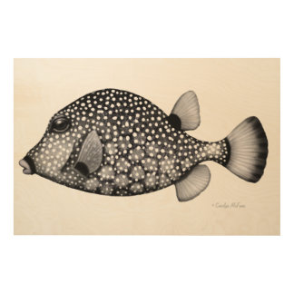 Spotted Smooth Trunkfish Wood Wall Art