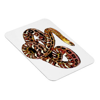Spotted Snake Magnet