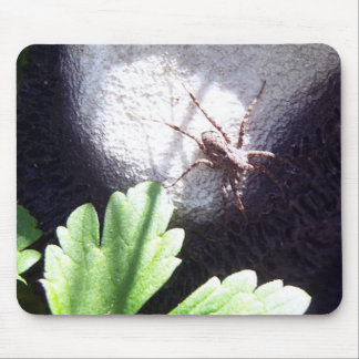 Spotted Spider Mouse Pad