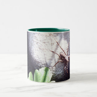 Spotted Spider Two-Tone Coffee Mug