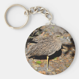 Spotted Thick-knee Dikkop Keychain