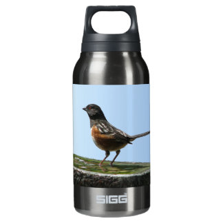 Spotted Towhee Bird Insulated Water Bottle