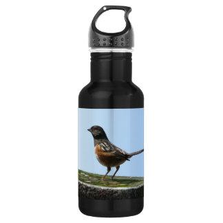 Spotted Towhee Bird 18oz Water Bottle