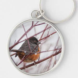 Spotted Towhee Keychain