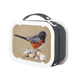 SPOTTED TOWHEE YUBO LUNCH BOX