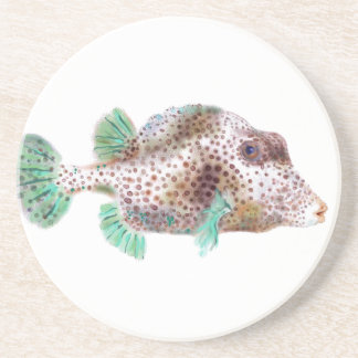 Spotted Trunkfish Coaster