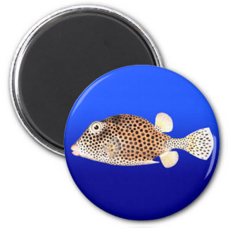 Spotted Trunkfish on Blue Background 2 Inch Round Magnet