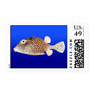 Spotted Trunkfish on Blue Background Postage