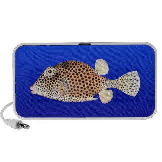 Spotted Trunkfish on Blue Background Notebook Speaker