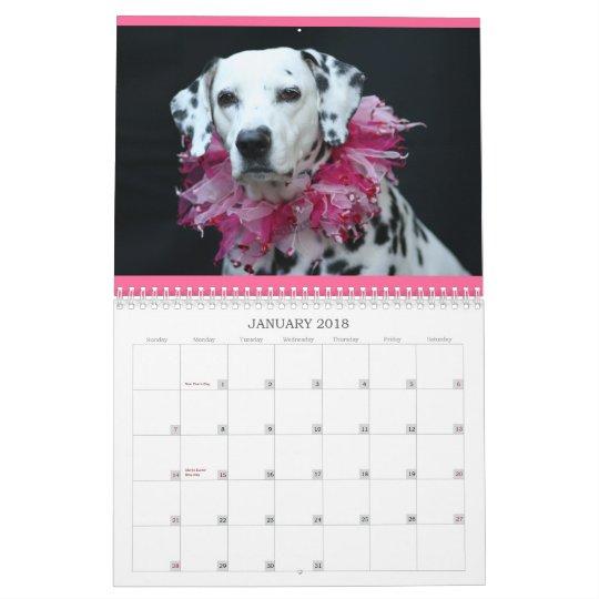 Spotted Wonders Calendar