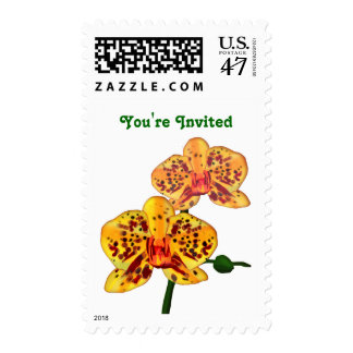 Spotted Yellow  Phalaenopsis Orchid Postage
