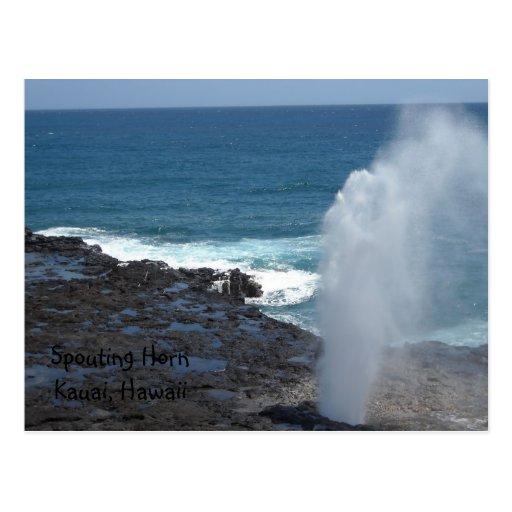 Spouting Horn Kauai, Hawaii Postcard