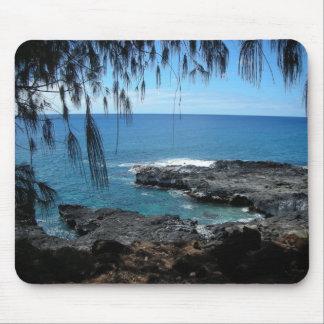 Spoutinghorn_Kauai_DrB Tapete De Ratones