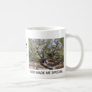 Sprawling Tree Near Santa Barbara on Coast Coffee Mug