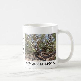 Sprawling Tree Near Santa Barbara on Coast Coffee Mug