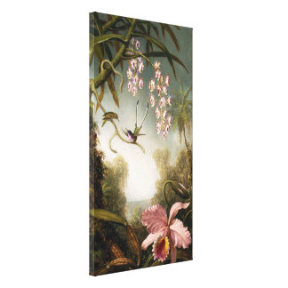 Spray Orchids with Hummingbird Canvas Print