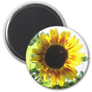 Spread a Little Sunshine!! Magnet