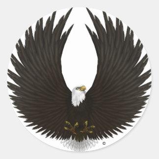 Spread Eagle.jpg Classic Round Sticker