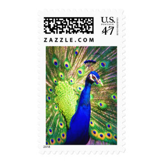 Spread The Love-Postage Postage