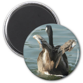 spread your wings 2 inch round magnet