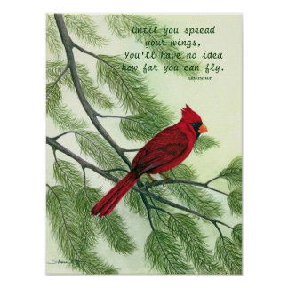 Spread Your Wings - Bright Red Cardinal Poster