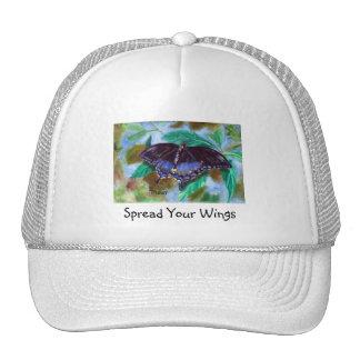 Spread Your Wings Butterfly  Hat