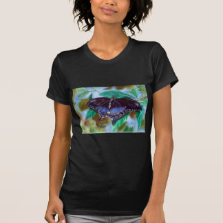Spread Your Wings Butterfly Ladies Apparel T Shirt