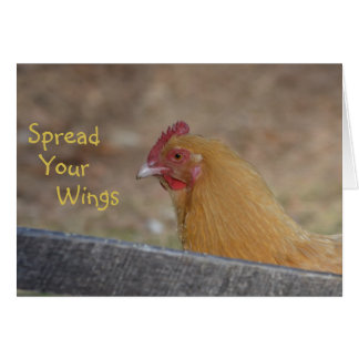 Spread Your Wings Chicken Happy Birthday Card