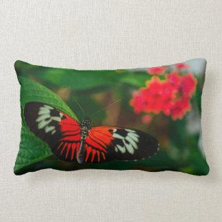 Spread Your Wings Lumbar Pillow