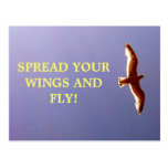 Spread Your Wings Postcard