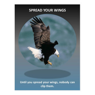 spread-your-wings postcard