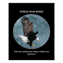 spread-your-wings poster