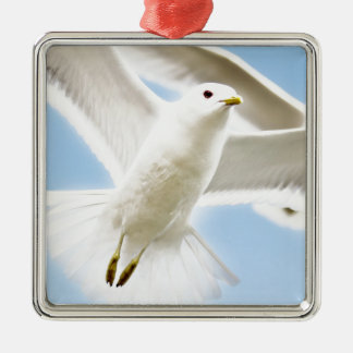 Spread your wings wild duck escape away metal ornament