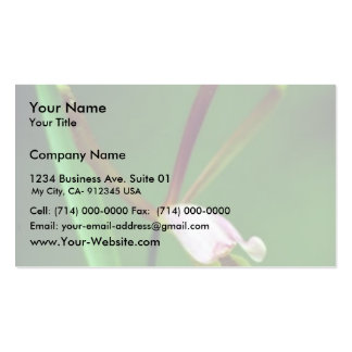 Spreading pogonia Double-Sided standard business cards (Pack of 100)